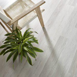 Basilica Century Pine | Shoreline Flooring