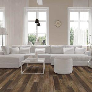 Vinyl flooring in living room | Shoreline Flooring