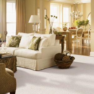 Gentle Approach of carpet | Shoreline Flooring