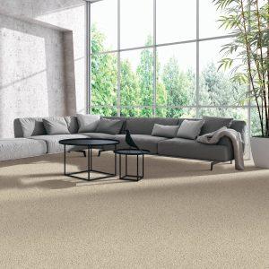 Natural Splendor carpet | Shoreline Flooring