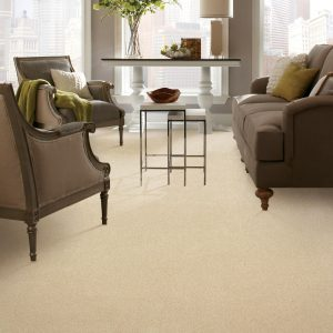 Carpet in living room | Shoreline Flooring