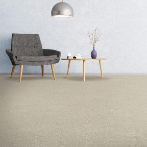 Soft comfort carpet flooring of the room | Shoreline Flooring