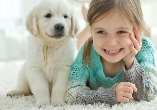 Kid and dog on carpet | Shoreline Flooring